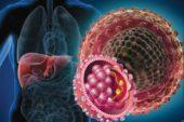 Hepatit B virüsü nedir Nasıl Tedavi Edilir, Hepatit B Virüsü Engellenebilir mi?