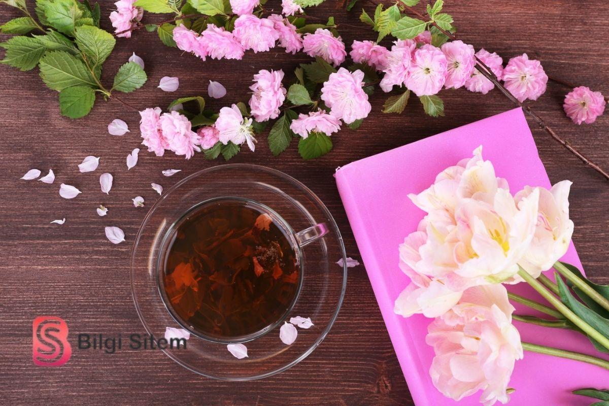 Zinde Tutan Bitki Çayları