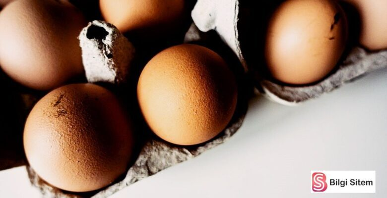 En İyi Yumurta Nasıl Seçilir?